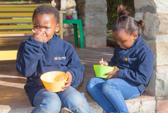 Royal Drakensberg Primary School